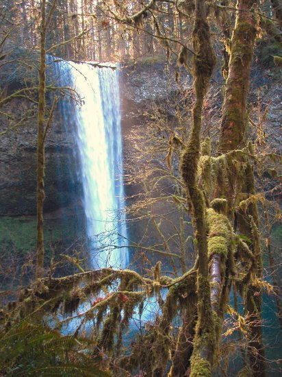 Silver Falls: South Falls in the Winter 04