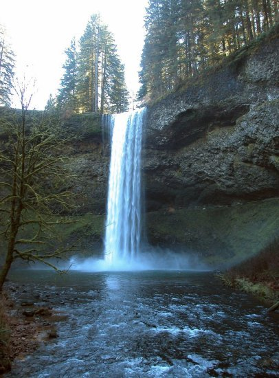 Silver Falls: South Falls in the Winter 12