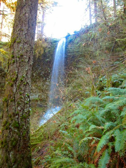 Silver Falls: Frenchie Falls in the Winter 20