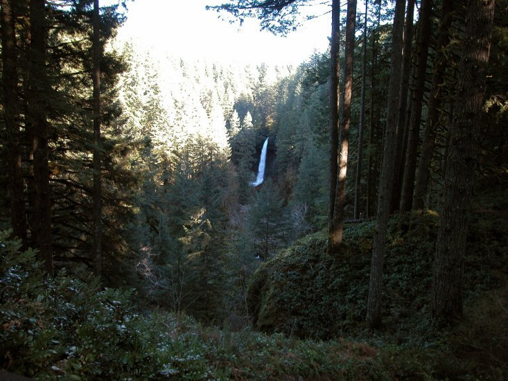 Silver Falls: North Falls from a distance 24