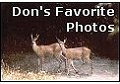 Click to enter Don's Favorite Photos