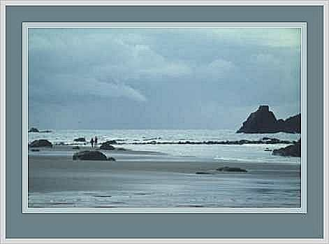 Two Friends on the Beach, Harris Beach, Brookings, Oregon