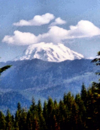 Mount Adams from the north