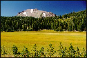 Mountain and Meadow