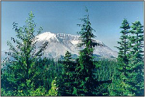 Mount St. Helens from the northwest
