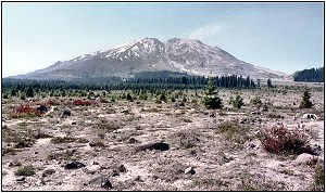 Mount St. Helens from the south