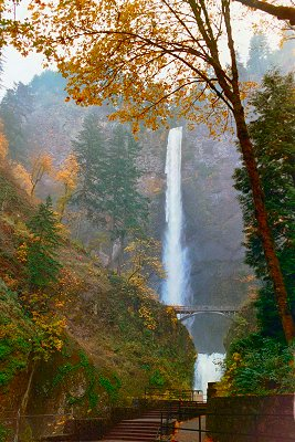 Multnomah Falls in the Autumn, #2