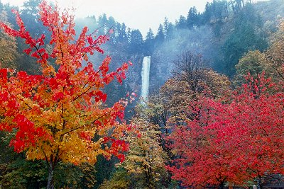 Multnomah Falls in the Autumn, #4