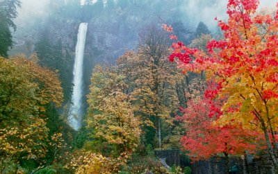 Multnomah Falls in the Autumn, #5