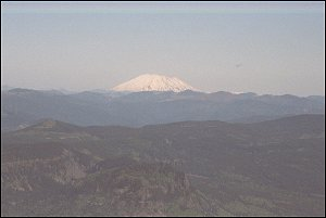 Mount St. Helens from Larch Mountain